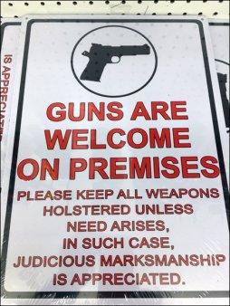 Gun and Weapons