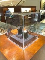 Brera Watch Museum Case