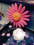 Littmans® Do-It-Yourself Magical Diamond Garden