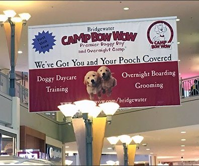 Camp Bow Wow® First Visit Free