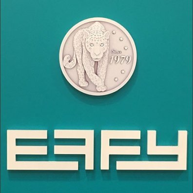 Effy Logo on Green 3