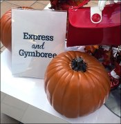 Express and Gymboree Co-Branding
