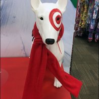 Target Bullseye Mascot Scarf Front