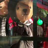 Well Dressed Teddy Bear Window 3