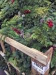 Christmas Boughs Bulk Bin Closeup