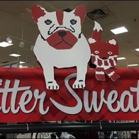 Critter Sweaters Coming 3