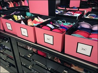 Victoria's Secret Pink Bra Bins in Retail