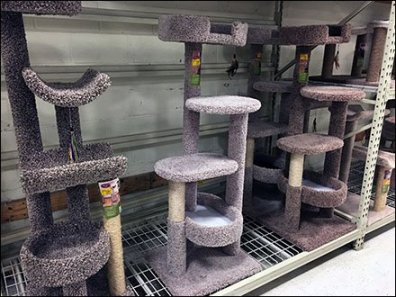 Cat Condo Pallet Rack Merchnadising 2