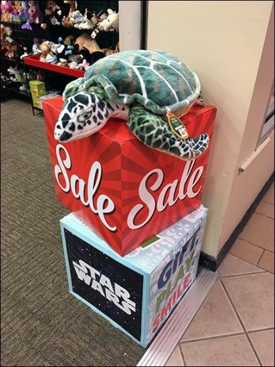 Plush Turtle Softens Sign Cubes 1