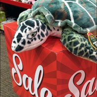 Plush Turtle Softens Sign Cubes 3