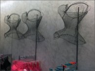Wireform Bustier Body Forms