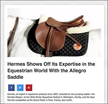 Hermes Allegro Saddle
