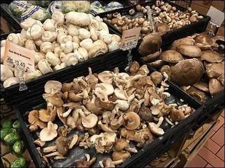 Produce - Merchandising Mushrooms By Texture Main