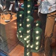 Robert Graham Window Cactus 3