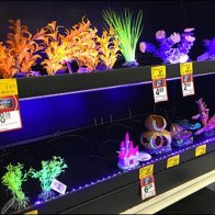 Fish Tank Accessory LED Lighting 1