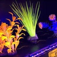 Fish Tank Accessory LED Lighting 3