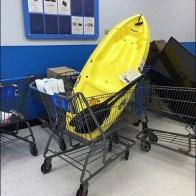 Kayak Shopping Cart 2