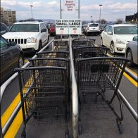 Wegmans Shopping Carts Segregated 1