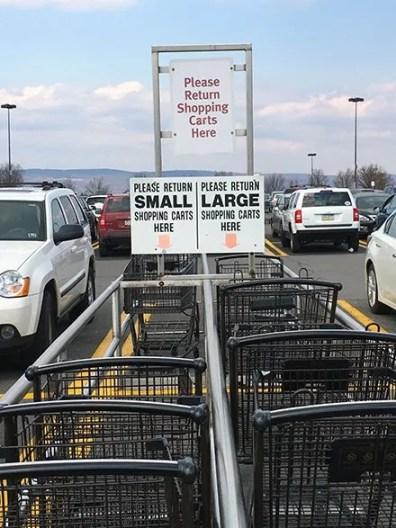 Wegmans Shopping Carts Segregated 2