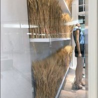 Fall Wheat Fields Blossom In Visual Merchandising