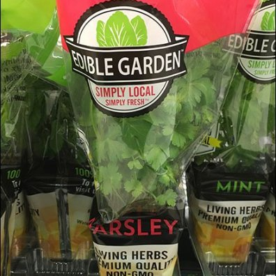 fresh-grow-herb-snip-it-rack-6