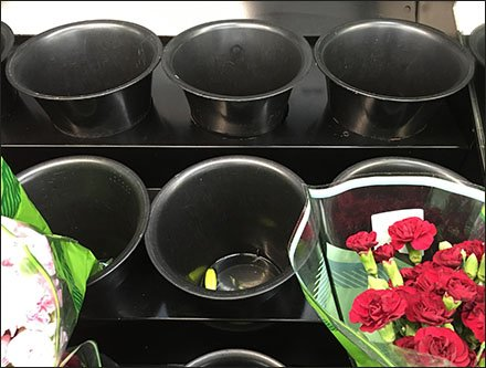 Plain-Jane Floral Merchandising Cooler