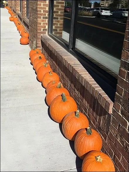 Fall Pumpkin Breadcrumb Trail Merchandising