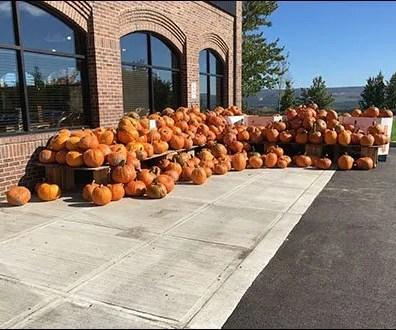pumpkin-cascade-1