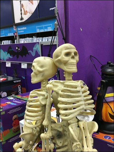 skeletons-sold-by-strip-merchandiser-2