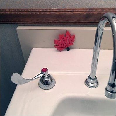 fall-arrives-in-the-restroom-2