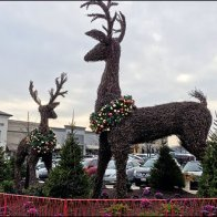 Giant Reindeer Topiary Christmas Decoration Theme