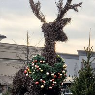 giant-reindeer-topiary-square-1