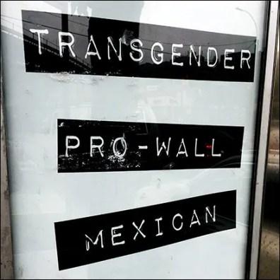 Transgender Pro-Wall Mexican Voter Politics