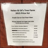 Tree Farm Service Counter and Send-Off