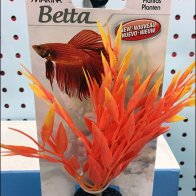 Carded Aquarium Plant Sales by Hook 3