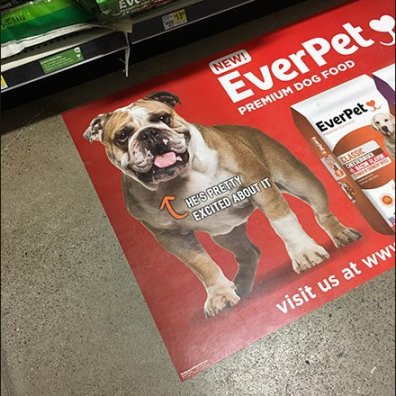 EverPet Dog Food Floor Graphic 3
