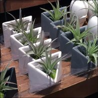 Life Magnetic Mated Triangle Plant Tray