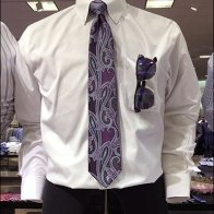 Necktie With Matvhing Sunglasses 3
