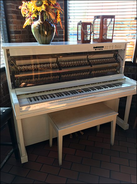 Player Piano as In-Store Cafe Amenity and Entertainment