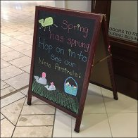 Spring Has Sprung Sidewalk Chalkboard Sign