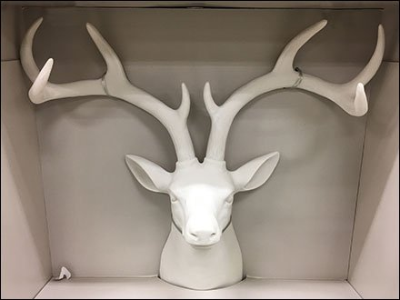 Stag Head Trophy Frame Holder