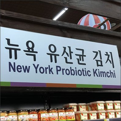 Probiotic Kimchi Category Definition Cooler