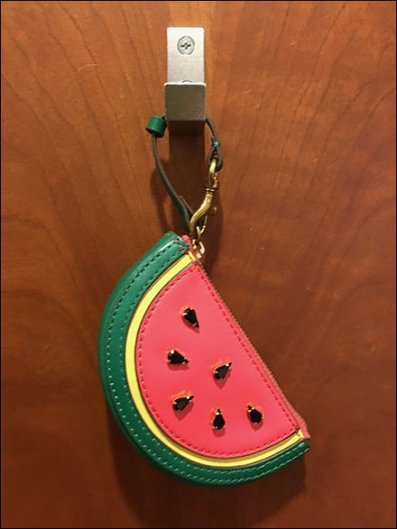Nordstrom Rack Watermelon Fitting Room Pin-Up Hook 1