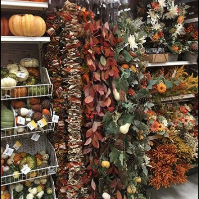 Fall Climbing Vine Scan Hooks In Crafts