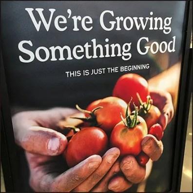 Whole Foods And Amazon Growing Something Good