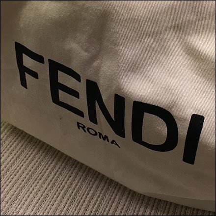 Fendi Branded Purse Storage Bag at Saks
