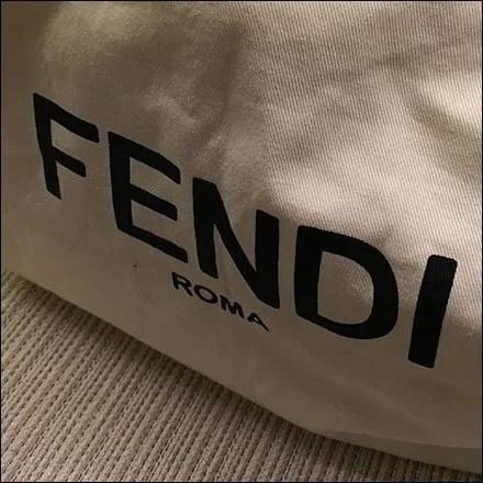 Fendi Branded Purse Storage Bag at Saks
