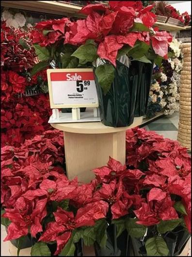 Poinsettia PreSeason Plant Sale 2