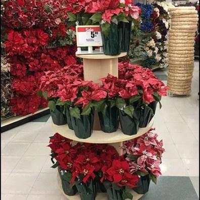 Poinsettia PreSeason Plant Sale 3