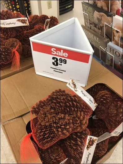 Triangular Sign For Pine Cone Merchandising